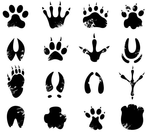 muddy footprint symbols vector art illustration