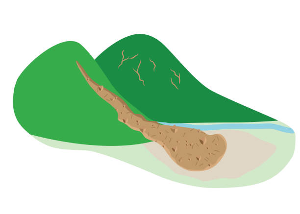 Mudslides that reached the flat land vector art illustration