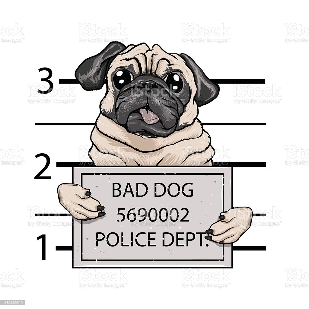 mugshot dog cartoon. vector art illustration