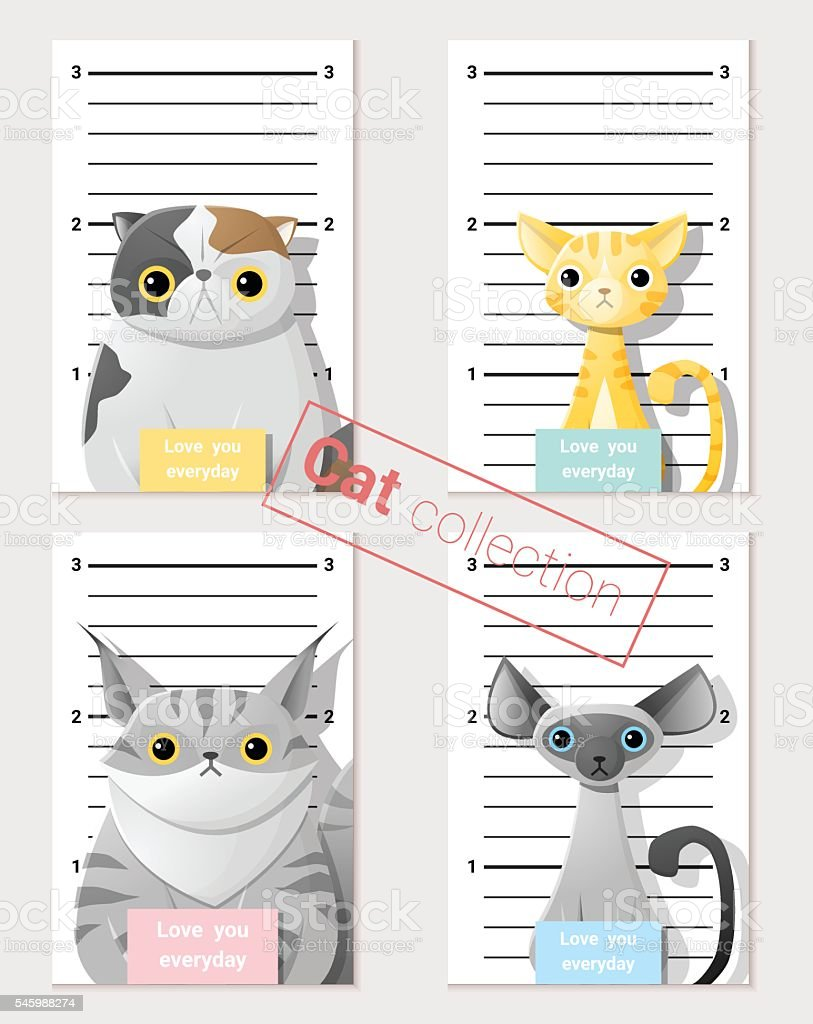 Mugshot of  cute cats holding a banner 2 vector art illustration