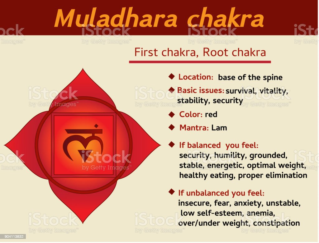 Muladhara Chakra Infographic First Root Chakra Symbol Description