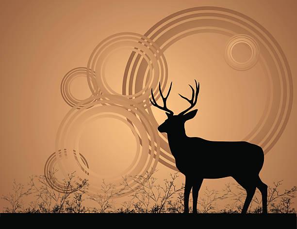 Mule Deer Buck Silhouette of a mule deer buck on brown background. mule stock illustrations