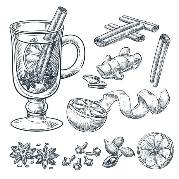 mulled 와인 제조 법, 벡터 그림을 스케치 합니다. 격리 된 손으로 그린 향신료, 재료의 설정. - 아니스 stock illustrations