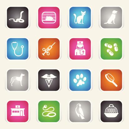 Multicolor Icons - Veterinary