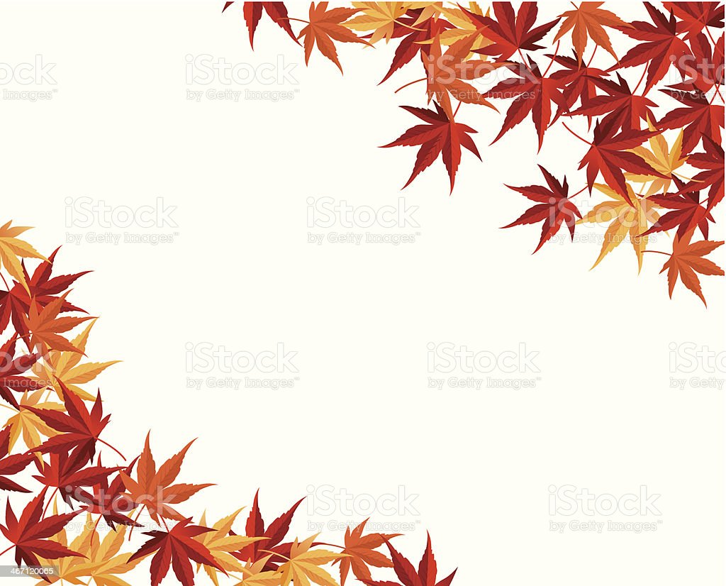 Multicolored autumn, maple leaf vector vector art illustration