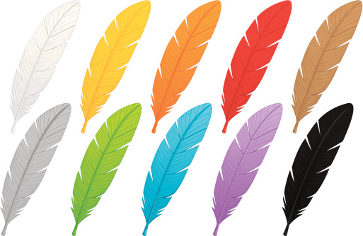Multi-colored Feathers