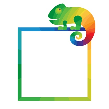 Multicolored square frame with chameleon.