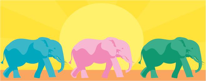 Multicoloured Elephants
