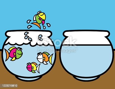 istock A multi-coloured fish jumping out of a fishbowl into another aquarium – a better place with space 1223215810
