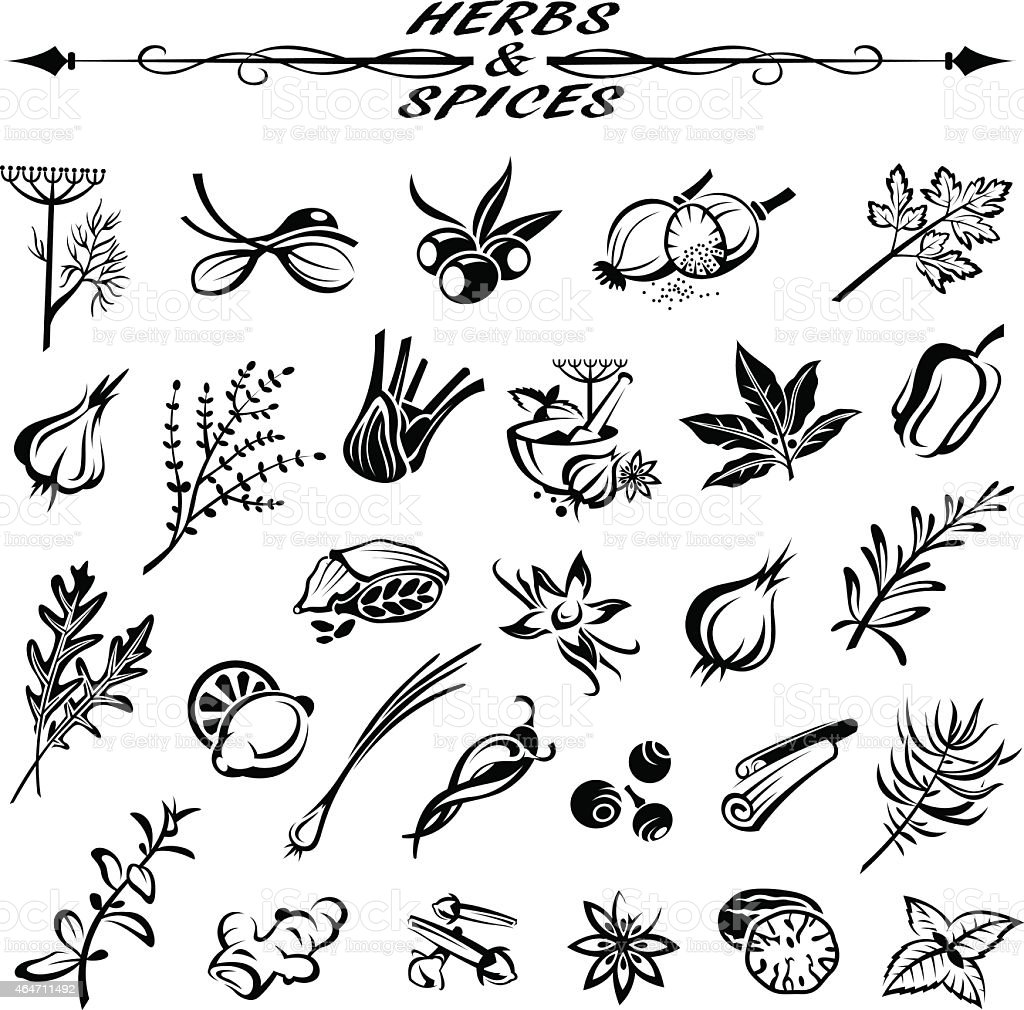 royalty free chives clip art  vector images
