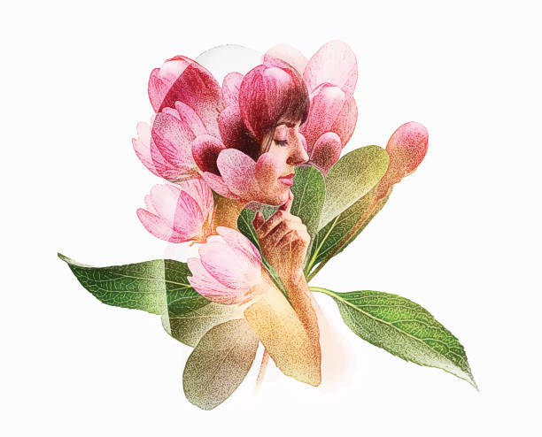 Multiple Exposure of young woman and apple blossoms Multiple Exposure of young woman and apple blossoms beautiful woman stock illustrations