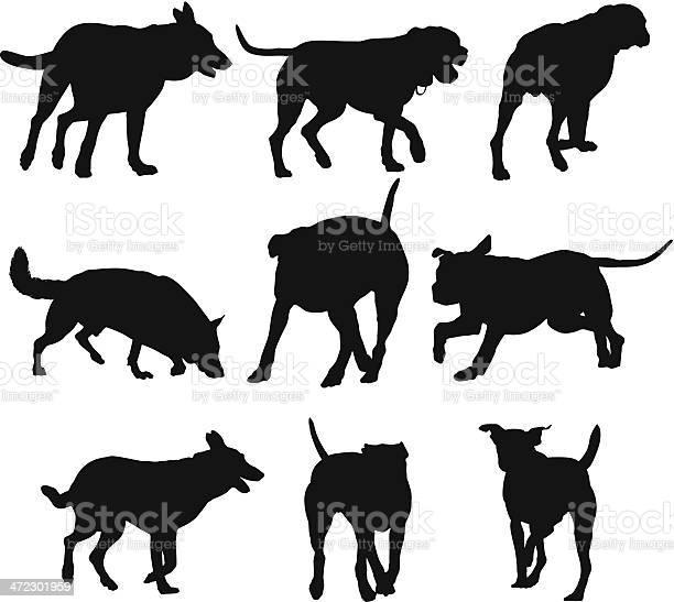 Multiple silhouettes of dogs vector id472301959?b=1&k=6&m=472301959&s=612x612&h=81nvkp tyzclyejqdvaf36rdbklkoz9drdcknuw3uv0=