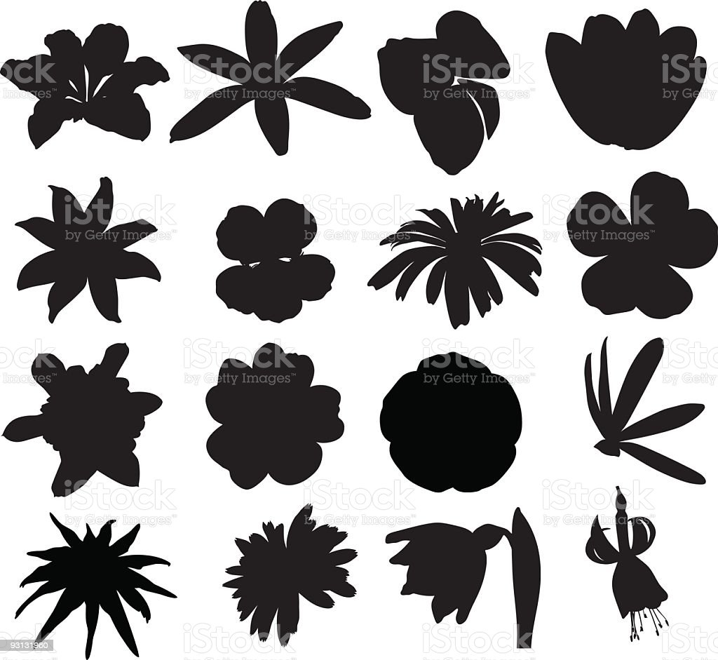 Multiple silhouettes of vector flowers vector art illustration