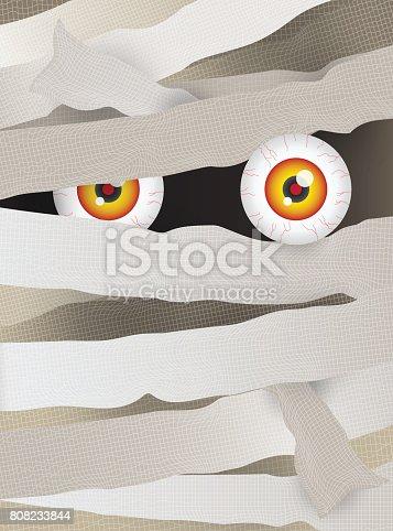 istock mummy face 808233844