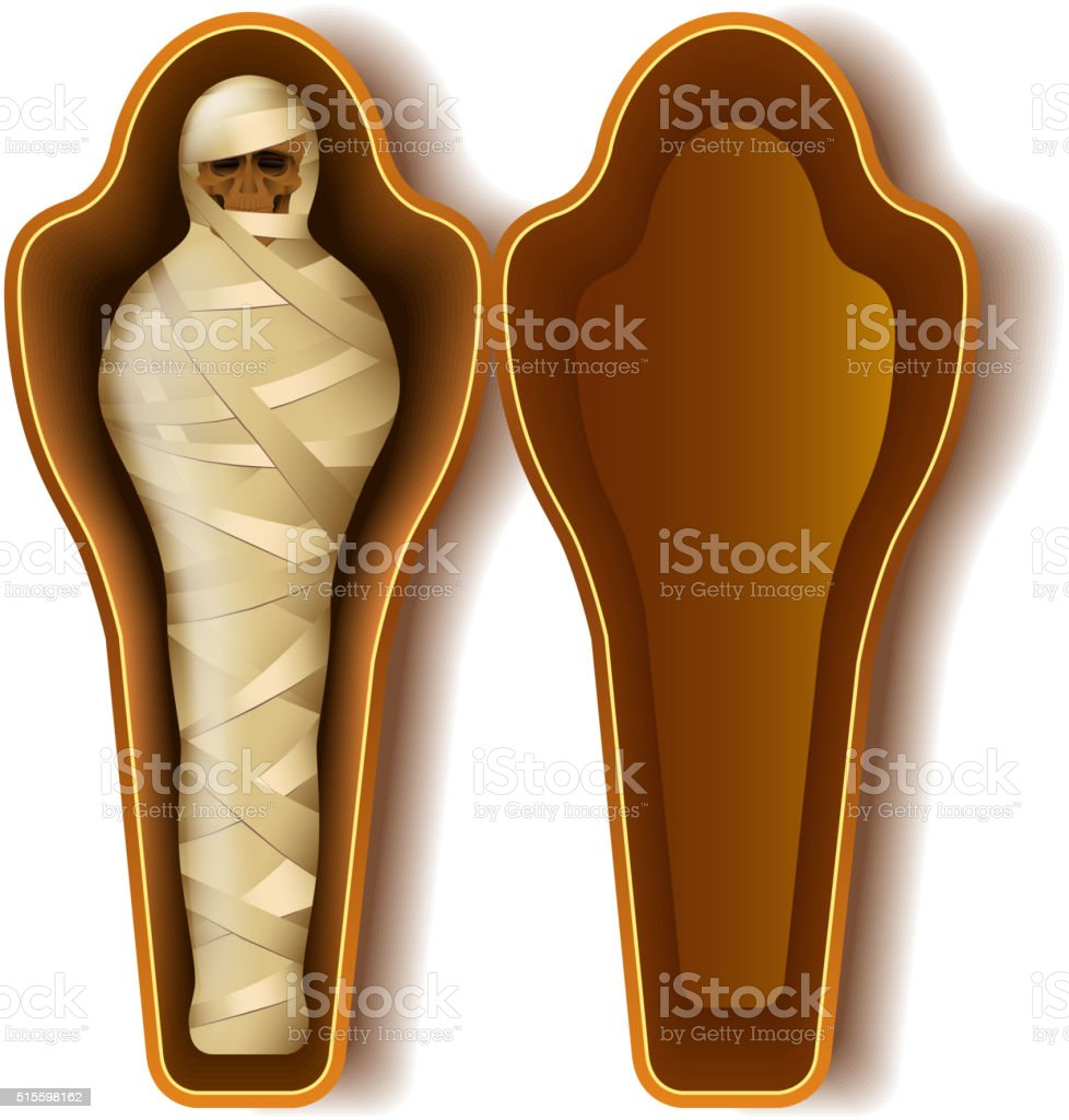 Mummy in sarcophagus isolated on white vector vector art illustration