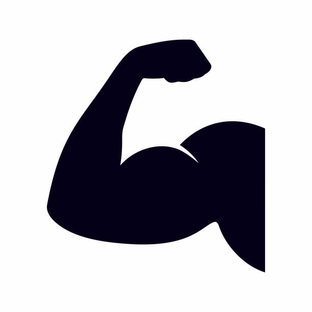 Muscle, bicep icon vector art illustration