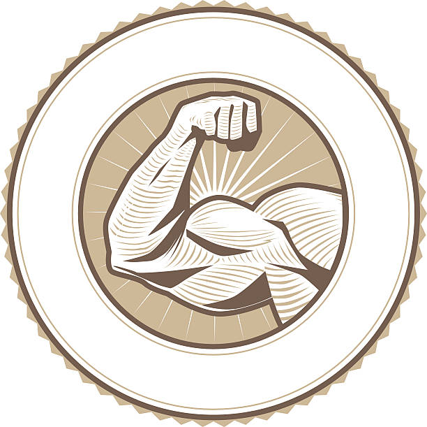 Muscle Flex Label Emblem seal with muscular arm flexing human muscle stock illustrations