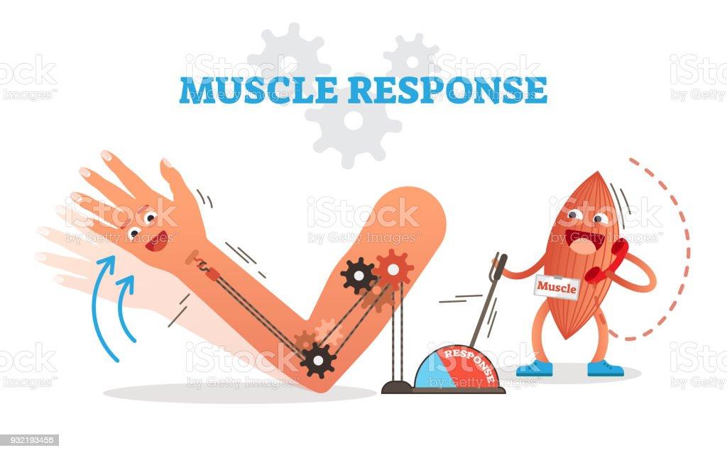 Ilustración de Esquema De Ilustración De Vector Conceptual Muscular ...