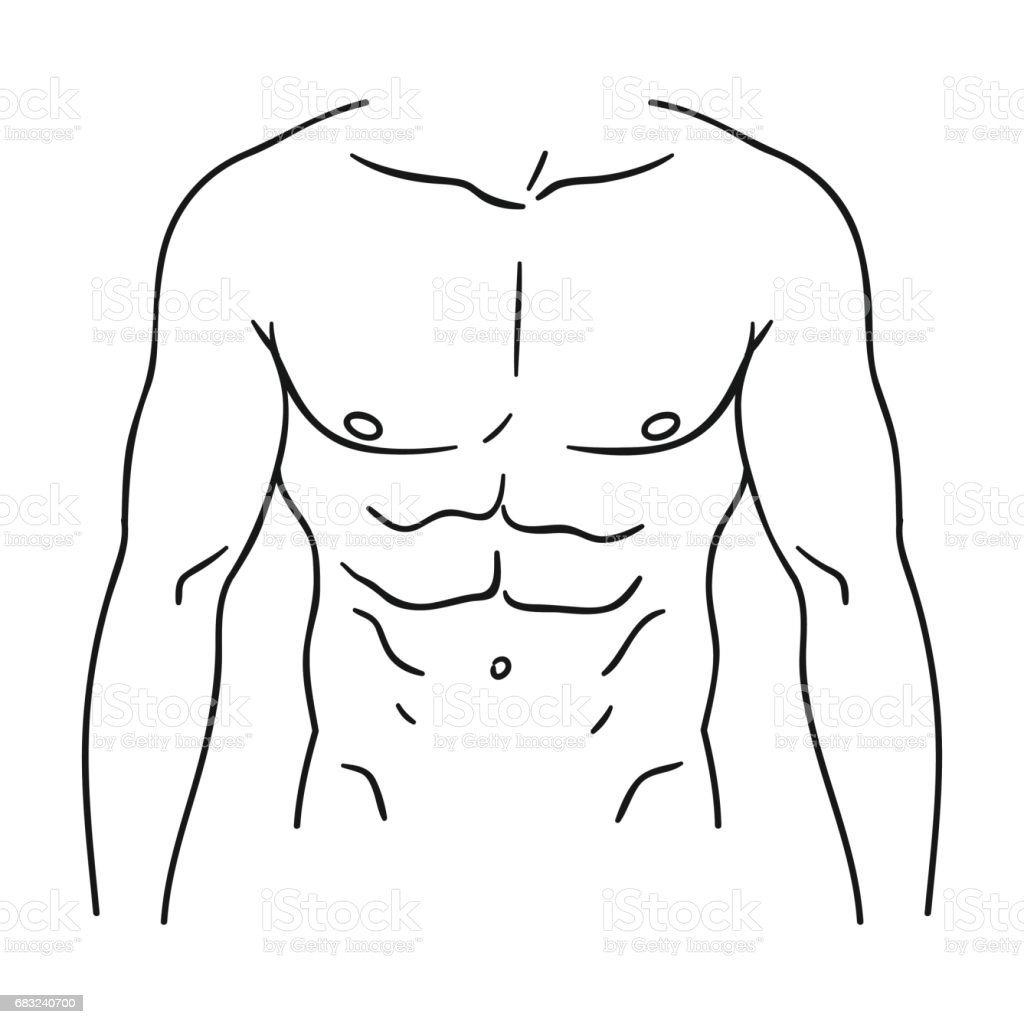 Human Body Torso Outline Wiring Diagrams