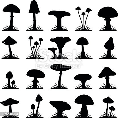 Mushroom and toadstool collection - vector silhouette