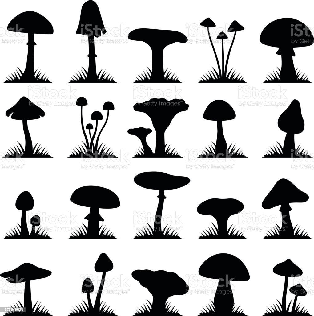 Mushroom and toadstool vector art illustration