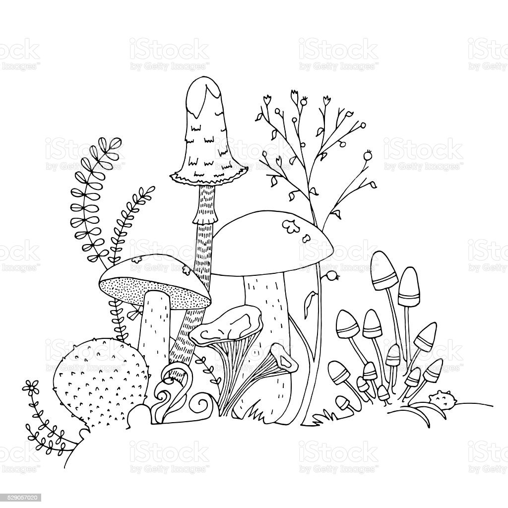 Mushroom Black And White Outline Hand Drawn Coloring Page