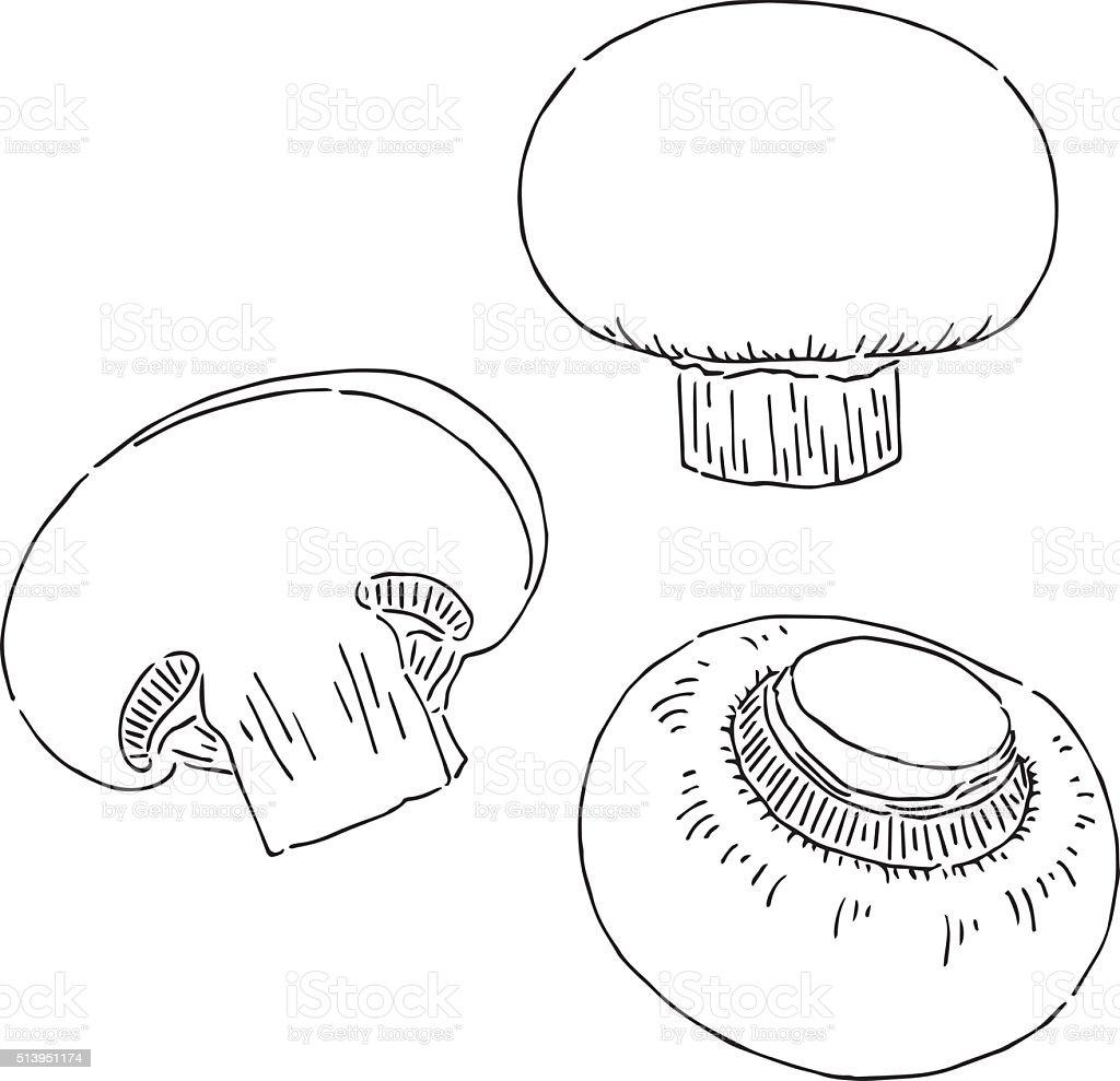 Mushroom drawing stock vector art 513951174 istock for How to draw a mushroom
