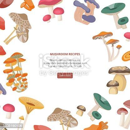 Mushroom recipes card with frame of forest mushrooms flat vector illustration.