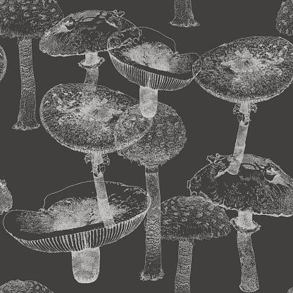 Mushroom Repeat Pattern