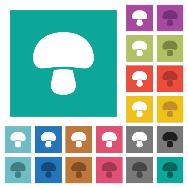 pilz-quadrat flach multi farbige symbole - winkelküche stock-grafiken, -clipart, -cartoons und -symbole