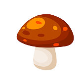 Mushroom with a red cap. Natural natural product. Vegetation element of the forest. Flat cartoon illustration