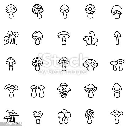 Mushrooms icon set