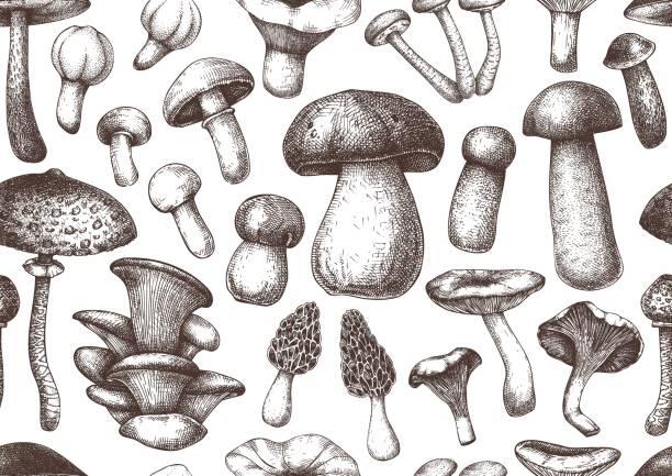 버섯 매끄러운 패턴 - 버섯 stock illustrations