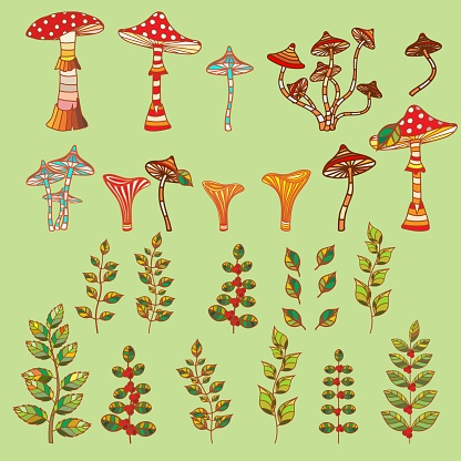 Mushrooms, toadstools and toadstools and branches of plants.