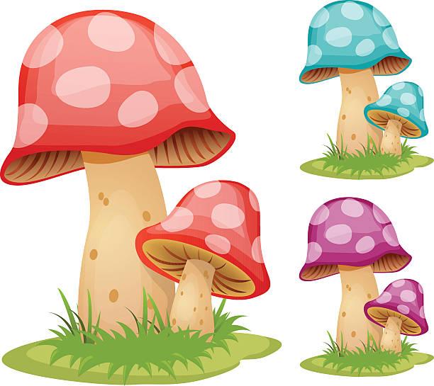버섯 - 버섯 stock illustrations