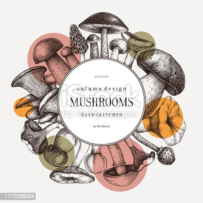 Hand sketched mushrooms wreath design. Autumn forest trendy background. Perfect for recipe, menu, label, icon, packaging. Vintage mushrooms template. Healthy food elements. Botanical illustration
