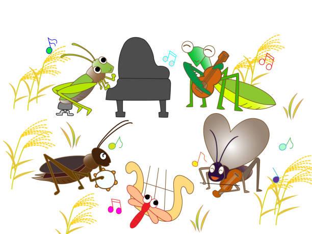 illustrazioni stock, clip art, cartoni animati e icone di tendenza di music animals in autumn - miscanthus sinensis