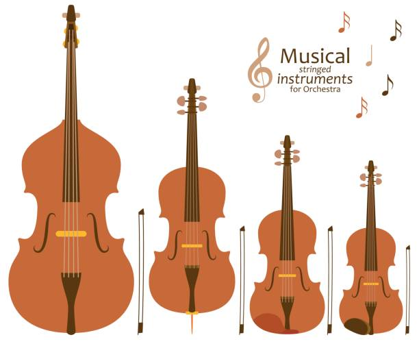 musical stringed instruments for orchestra - skrzypce stock illustrations