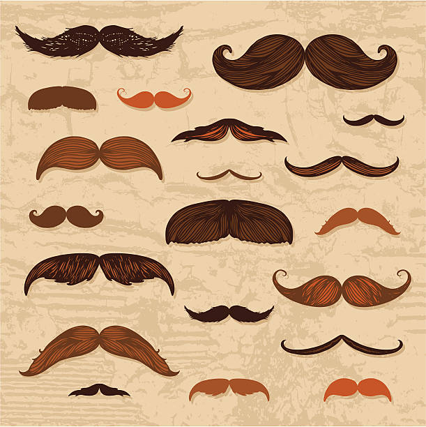 ilustrações, clipart, desenhos animados e ícones de bigode mão desenhada conjunto - bigode