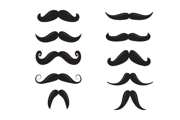 ilustrações, clipart, desenhos animados e ícones de ícone de bigode - bigode