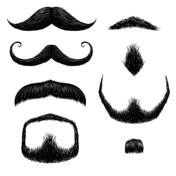 ilustrações, clipart, desenhos animados e ícones de bigodes definir o desenho à mão - bigode