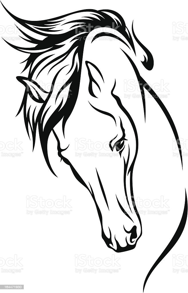 royalty free horse head clip art vector images illustrations istock rh istockphoto com mustang horse head clipart mustang horse head clipart