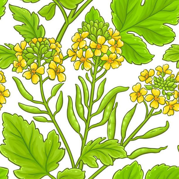 1,001 Mustard Flower Illustrations, Royalty-Free Vector Graphics & Clip Art  - iStock