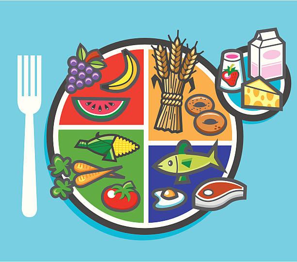 stockillustraties, clipart, cartoons en iconen met my plate food pie chart - portie
