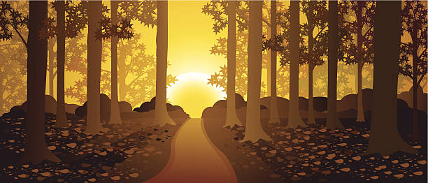 Geheimnisvolle Wald – Vektorgrafik