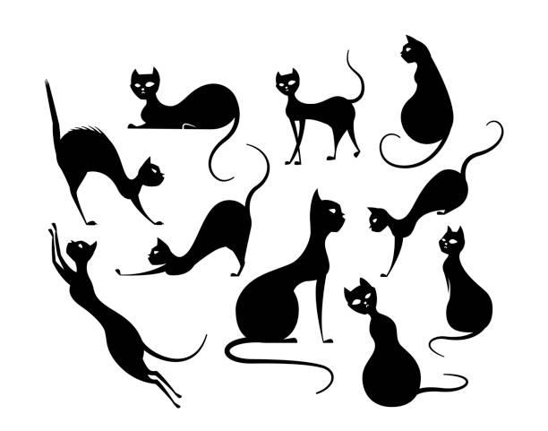 Mystical and elegant black cat posing set Mystical and elegant black cat posing set, spooky kitty in different pose black cat stock illustrations