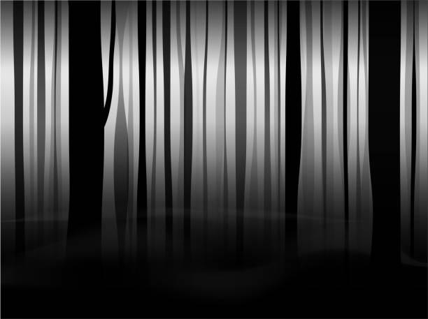 illustrazioni stock, clip art, cartoni animati e icone di tendenza di mystical black forest with fog and smoke. black and white fairy background. - thriller