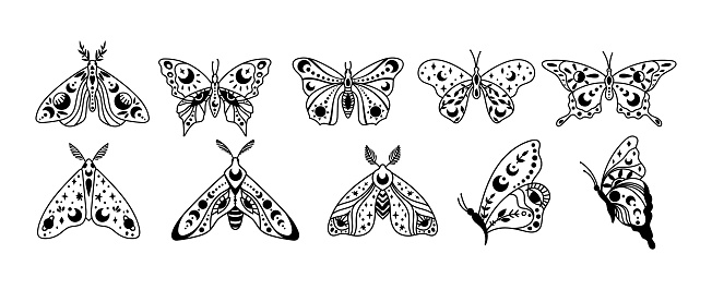 Mystical boho celestial butterfly and moth isolated cliparts bundle, mystical line collection, moon and stars ornament, magic crescent moon, esoteric objects - black and white vector illustration set