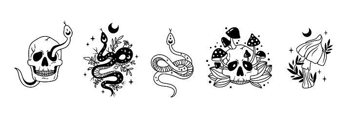 Mystical halloween bundle - celestial floral snake, skull with mushrooms, moon and stars isolated cliparts, creepy esoteric stuff, serpent, skeleton, flowers black and white vector illustration