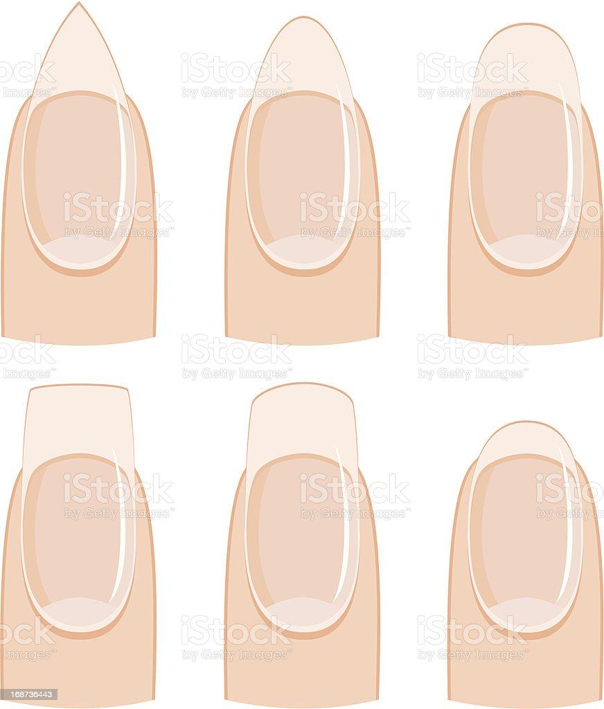 Nail shapes vector art illustration